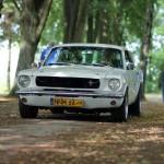 Mustang do Ślubu Olsztyn