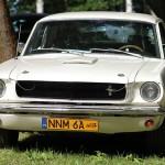Ford Mustang 1965 do Ślubu w Olsztynie